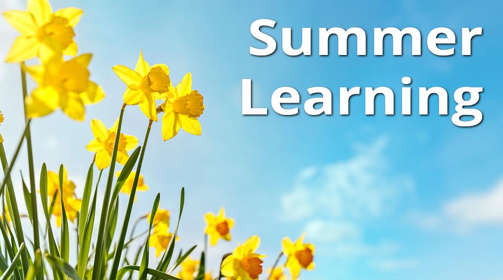 Aprendizaje de verano