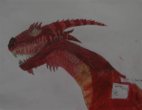 Dragon by Shan